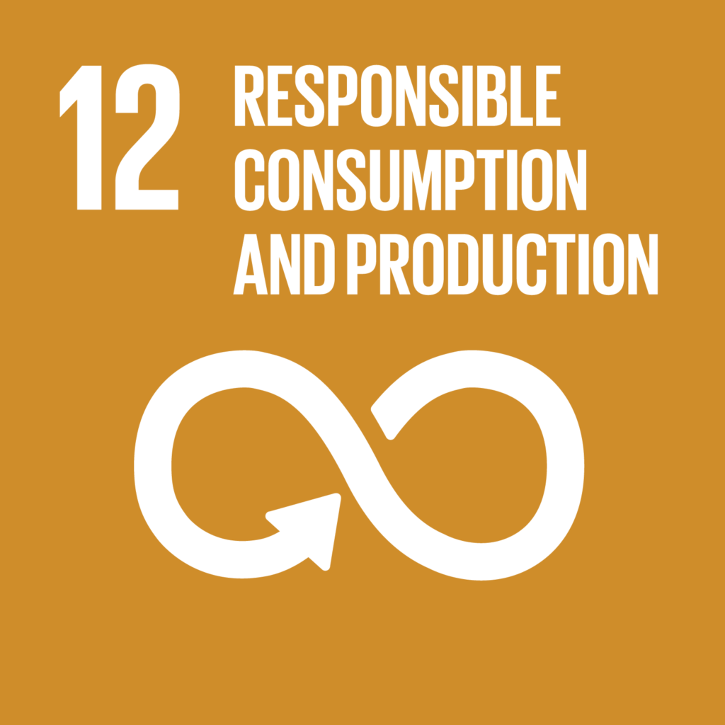 sdg responsible consumption and production impact facility