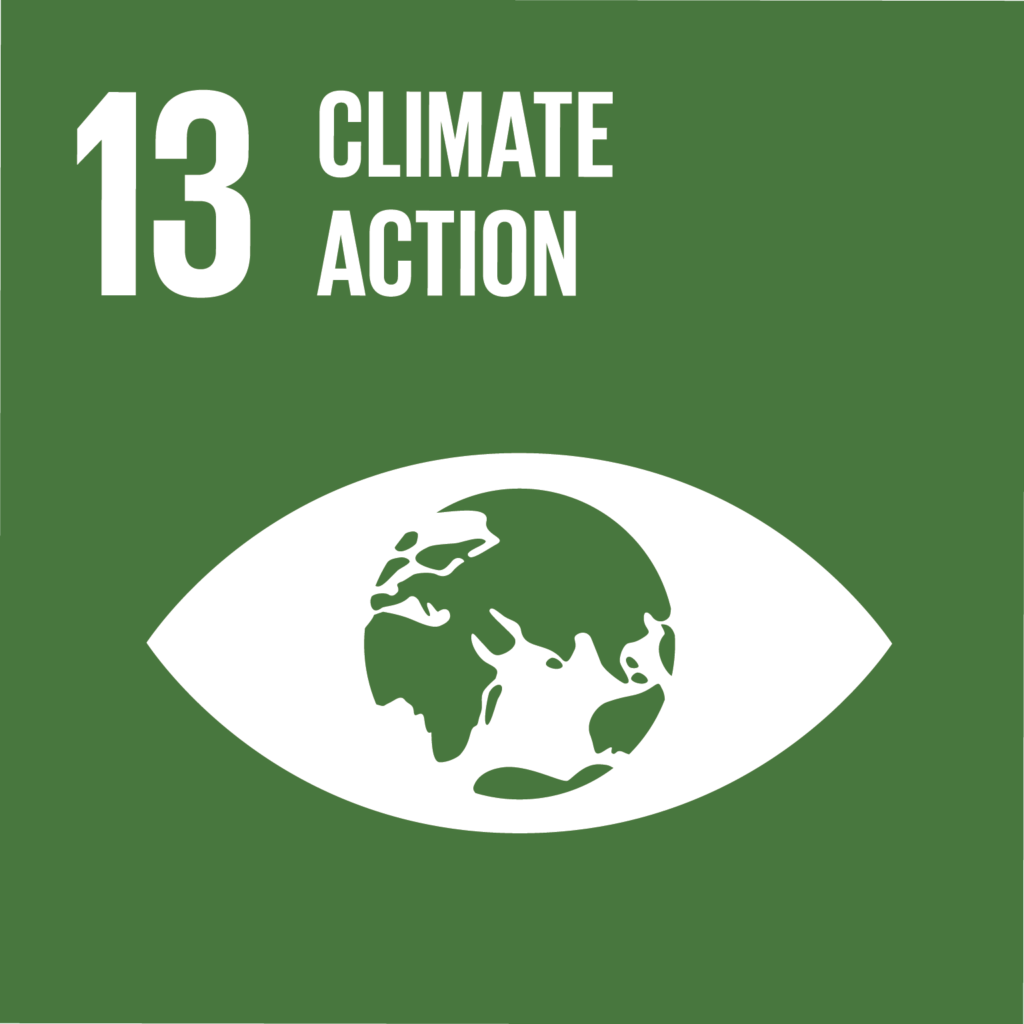 sdg climate action impact facility