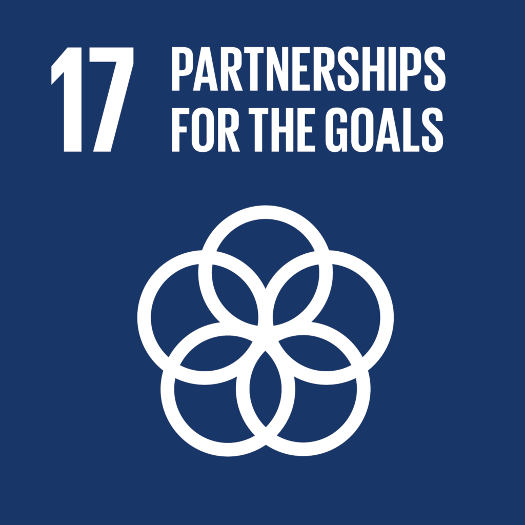 sdg partnerships for the goals impact facility
