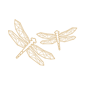 the dragonfly sustainability favicon